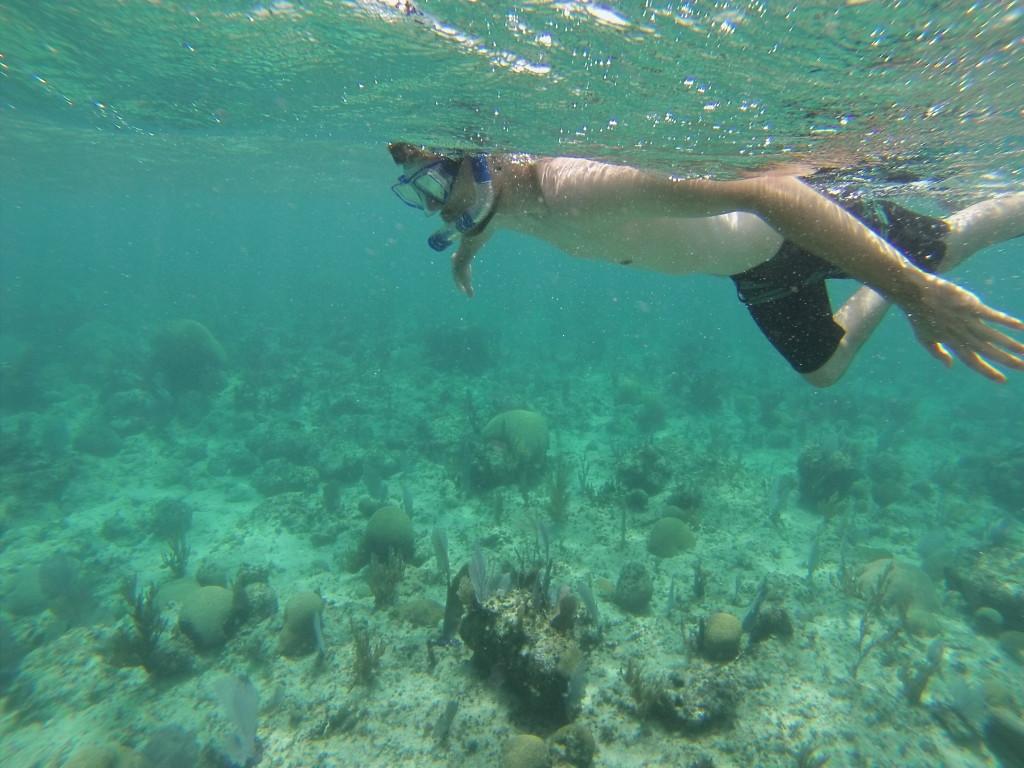 Snorkeling Utila Honduras